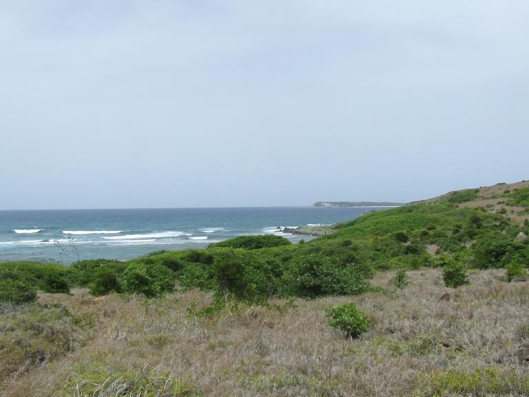 st.martin deserted island
